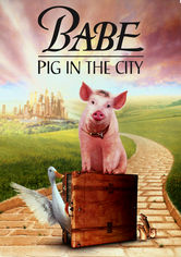 Rent Babe: Pig in the City on DVD