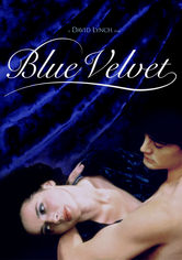 Rent Blue Velvet on DVD