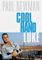 Rent Cool Hand Luke on DVD