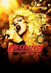 Rent Hedwig and the Angry Inch on DVD