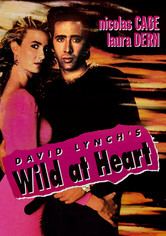 Rent Wild at Heart on DVD