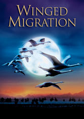 Rent Winged Migration on DVD