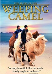 Rent The Story of the Weeping Camel on DVD