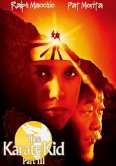 Rent Karate Kid Part III / Next Karate Kid on DVD