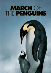 Rent March of the Penguins on DVD