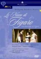 Rent Le Nozze Di Figaro on DVD
