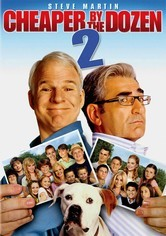 Rent Cheaper by the Dozen 2 on DVD