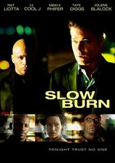 Rent Slow Burn on DVD
