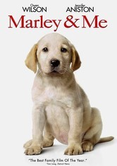 Rent Marley & Me on DVD