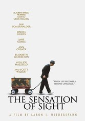 Rent The Sensation of Sight on DVD