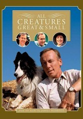 Rent All Creatures Great and Small on DVD