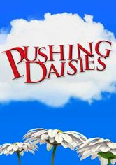 Rent Pushing Daisies on DVD