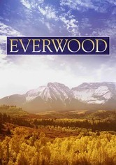 Rent Everwood on DVD