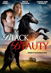 Rent Black Beauty on DVD