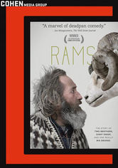Rent Rams on DVD