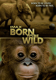Born to Be Wild: IMAX